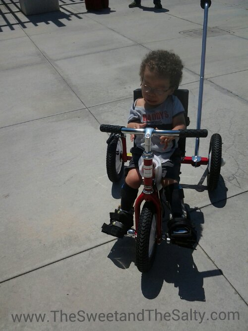 adaptive bike, special needs